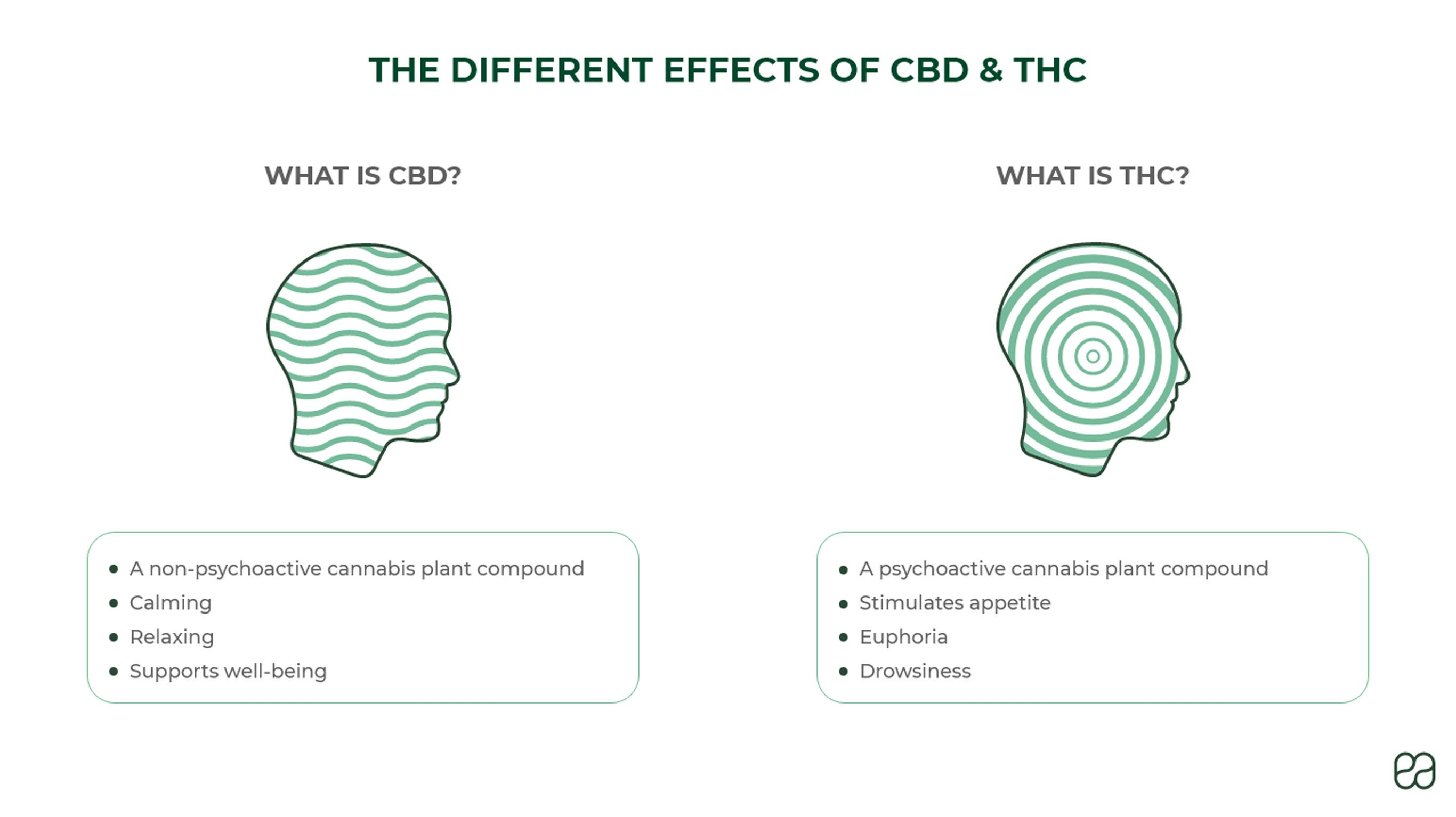 the-different-effects-of-cbd-and-thc